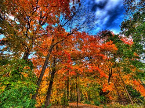 Tips for an Active Outdoor Fall Season