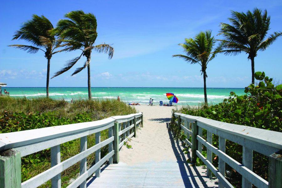 A+sunny+Florida+beach%3F+Or+the+scene+of+a+violent+crime%3F