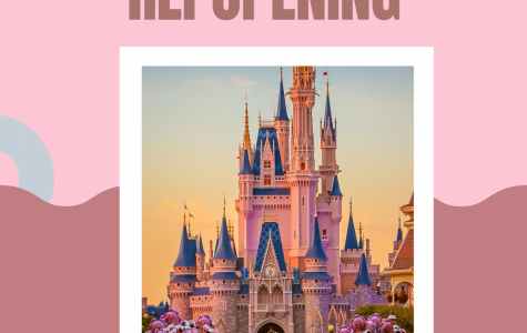 Reopening of Theme Parks