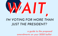 Wait, I'm Voting For More Than Just the President?